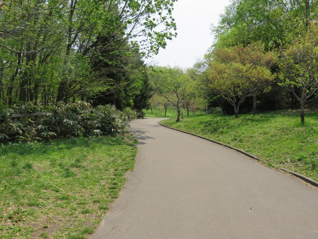 平岡公園の通路