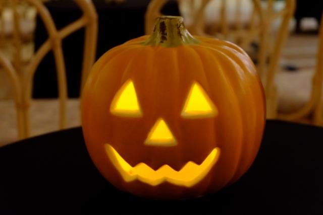 イエローパンプキンジュニアというかぼちゃ専門店知ってますか?