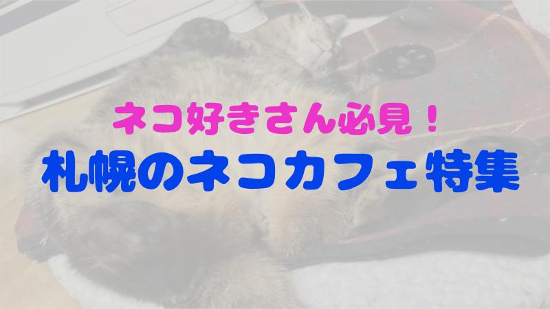ネコ好きにはたまらない!札幌にある猫カフェ5選!