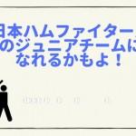 日本ハムのジュニアチームになれるかも!