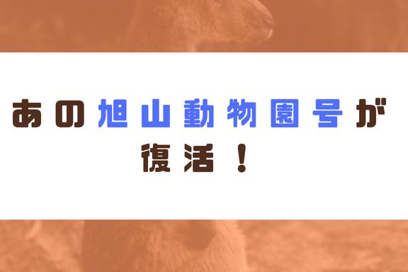 【6~8月】あの旭山動物園号が復活!この機会を見逃すな!