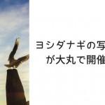 ヨシダナギの写真展が大丸で開催!