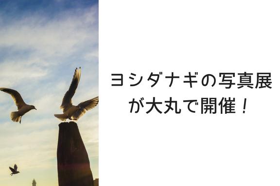 あのヨシダナギの写真展が大丸札幌で行われているぞ!