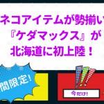 ネコアイテムが勢揃い!『ケダマックス』が北海道に初上陸!