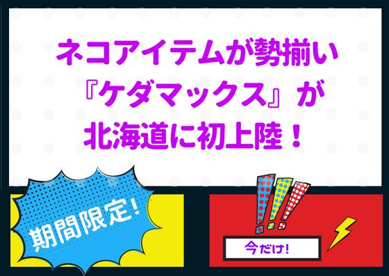 ネコ好き歓喜!?ネコブランド『ケダマックス』が札幌PIVOTにオープンしてるぞ!