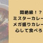 悶絶級!?ミスターカレーのメガ盛りカレーは心して食べろ!