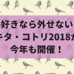 今年も開催!鳥グッズの祭典『キタ・コトリ2018』!