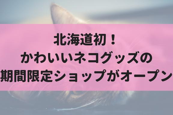 【8/15~28】北海道初!キキヨコチョにネコグッズの『ネコノバ』が期間限定でオープン!