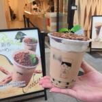 抹茶cafe RIQの盆栽タピオカミルクティー