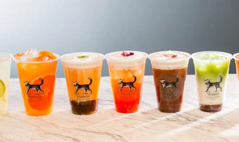 【12/22~】台湾茶専門店 ティーサインが札幌駅近くのコバルドオリに期間限定オープン!