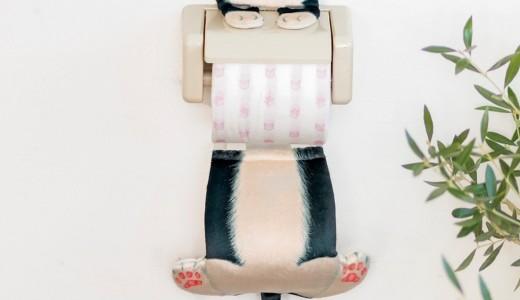 【1/10~2/26】さっぽろ東急百貨店で猫だまり展が開催!