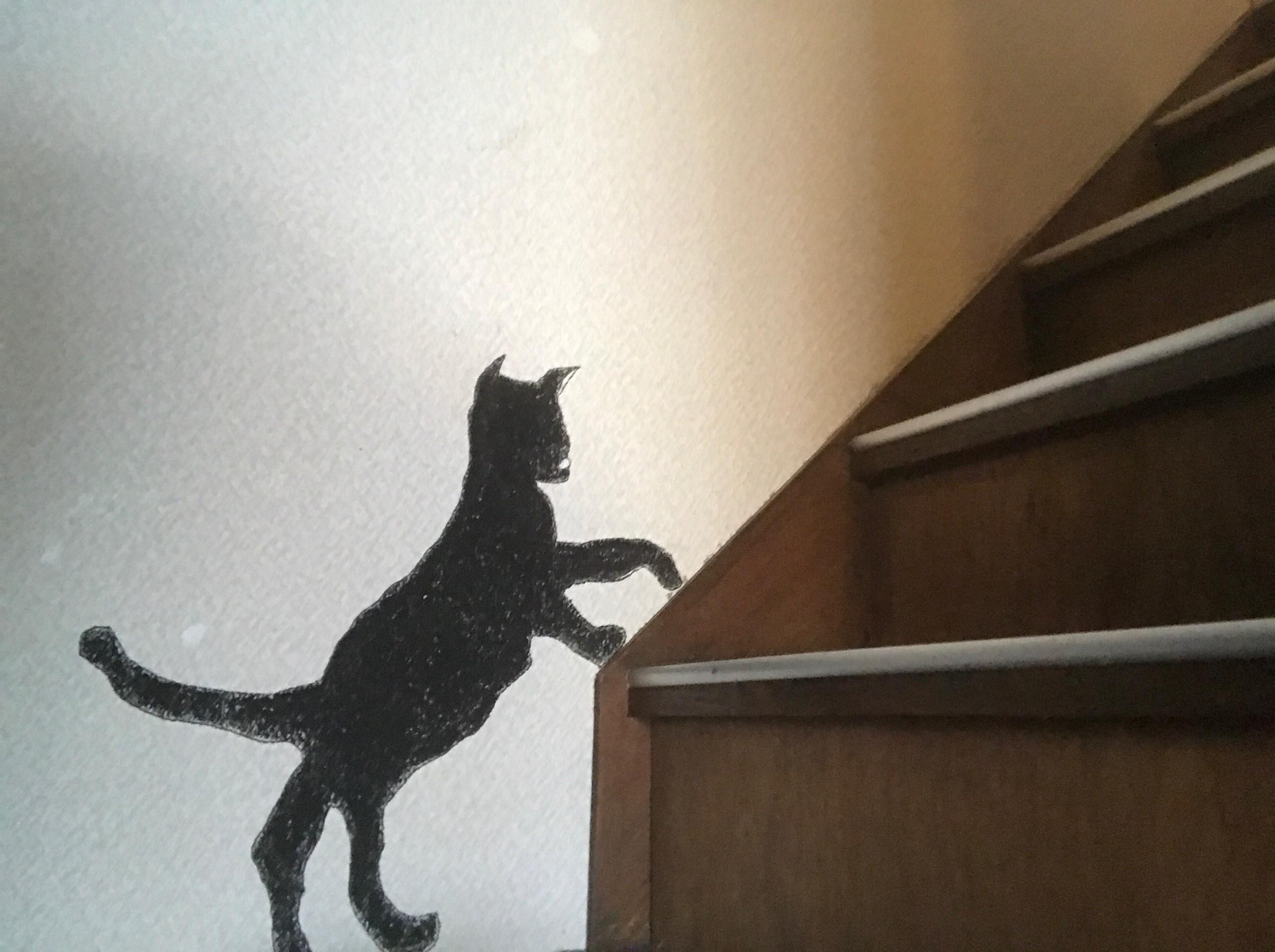 階段を登っていくネコ