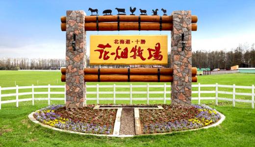 【2/1】花畑牧場の期間限定ショップがMEGAドン・キホーテ札幌狸小路店内にオープン!