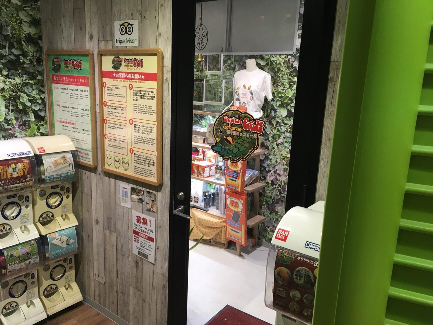 狸小路4丁目のベガジオ4階にあるトロピカル・ジェム 狸小路ジャンゴー店