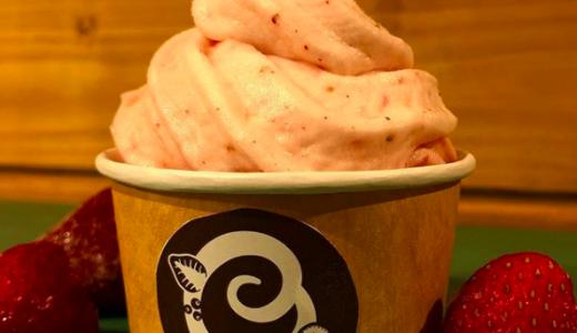 ソフトクリーム専門店『COCOBON』が厚別にオープン!フルーツを砕いてアイスとミックスする新しい作り方!
