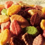 木の葉型チョコ『リーフメモリー』を販売するモンロワールが大丸札幌に期間限定でオープン