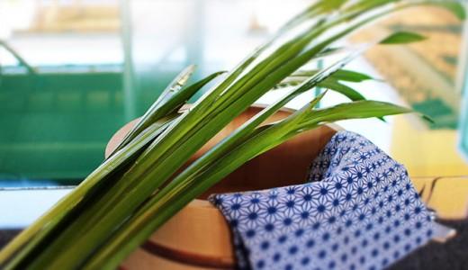 極楽湯で毎年恒例の菖蒲湯イベントを開催!子どもが入浴料無料に!