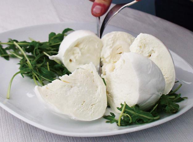 ファットアビオ北海道のモッツァレラチーズ
