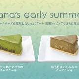 ナナズグリーンティーで京都宇治の抹茶と北海道産クリームチーズを使用したチーズケーキを新発売!