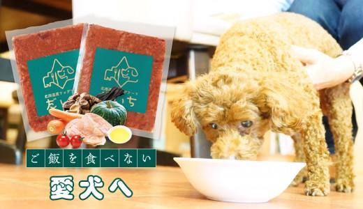 【北海道産ドッグフード だいち】ご飯を食べない愛犬のための無添加ドッグフードを販売