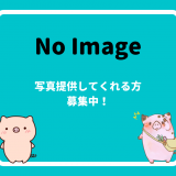 No Image 写真募集中!