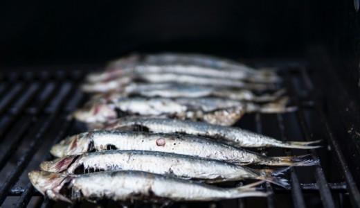 【居酒屋ふる里 札幌総本店】毎朝仕入れる新鮮素材を使った料理を提供