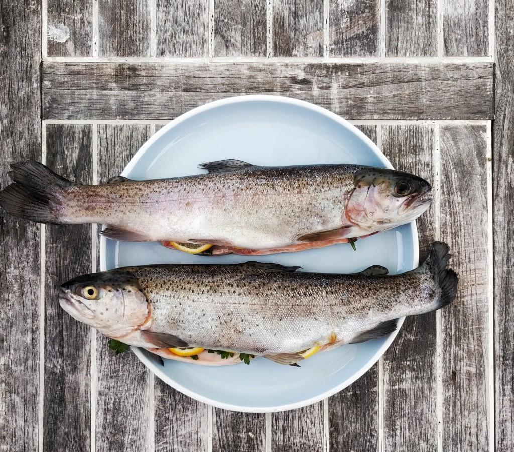 【シハチ鮮魚店】魚屋が提供する海鮮丼が食べれるぞっ!