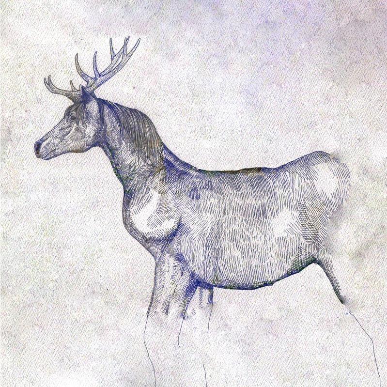 『馬と鹿』のジャケット