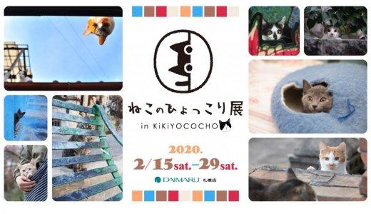 ねこがひょっこりと顔を覗かせる『ねこのひょっこり展』がキキヨコチョで開催!展示作品も募集中!