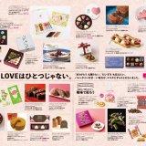 Goody ESTA vol.4のチョコレート