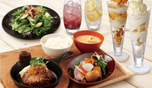 【みのるダイニング 札幌ステラプレイス店】札幌駅に北海道食材にこだわるおしゃれカフェが!