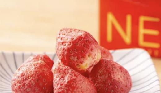 新感覚フリーズドライチョコレートを販売する『北海道十三菓』が大丸札幌に期間限定で出店!