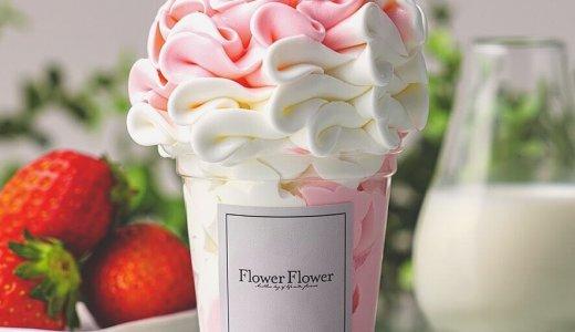【Flower Flower】パセオに『エディブルフラワー』を使用したフラワースイーツを提供するカフェがオープン!