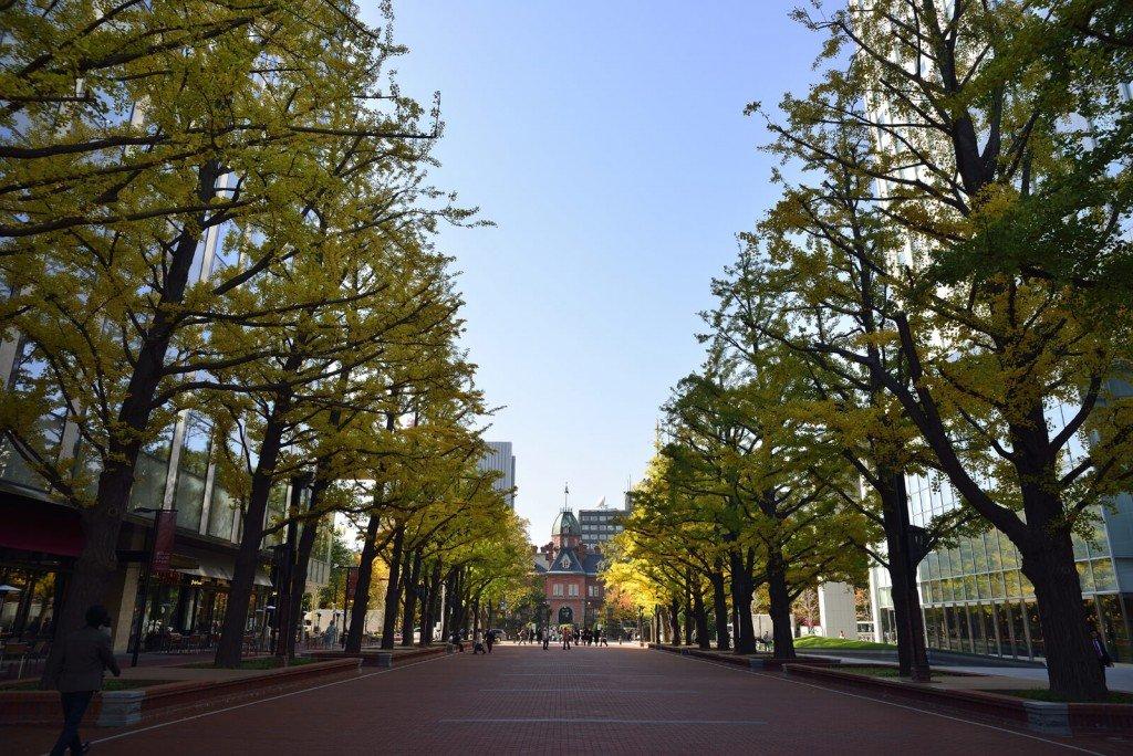 北3条広場(アカプラ)