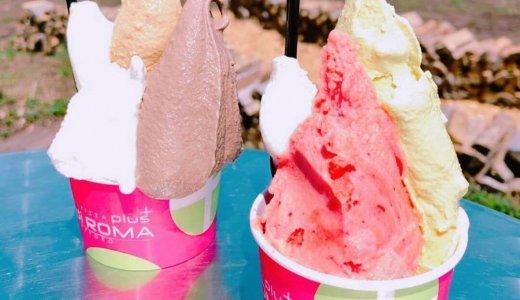 【レ・ディ・ローマ プラス 札幌常盤本店】南区でジェラートやピザなどが楽しめるカフェ!