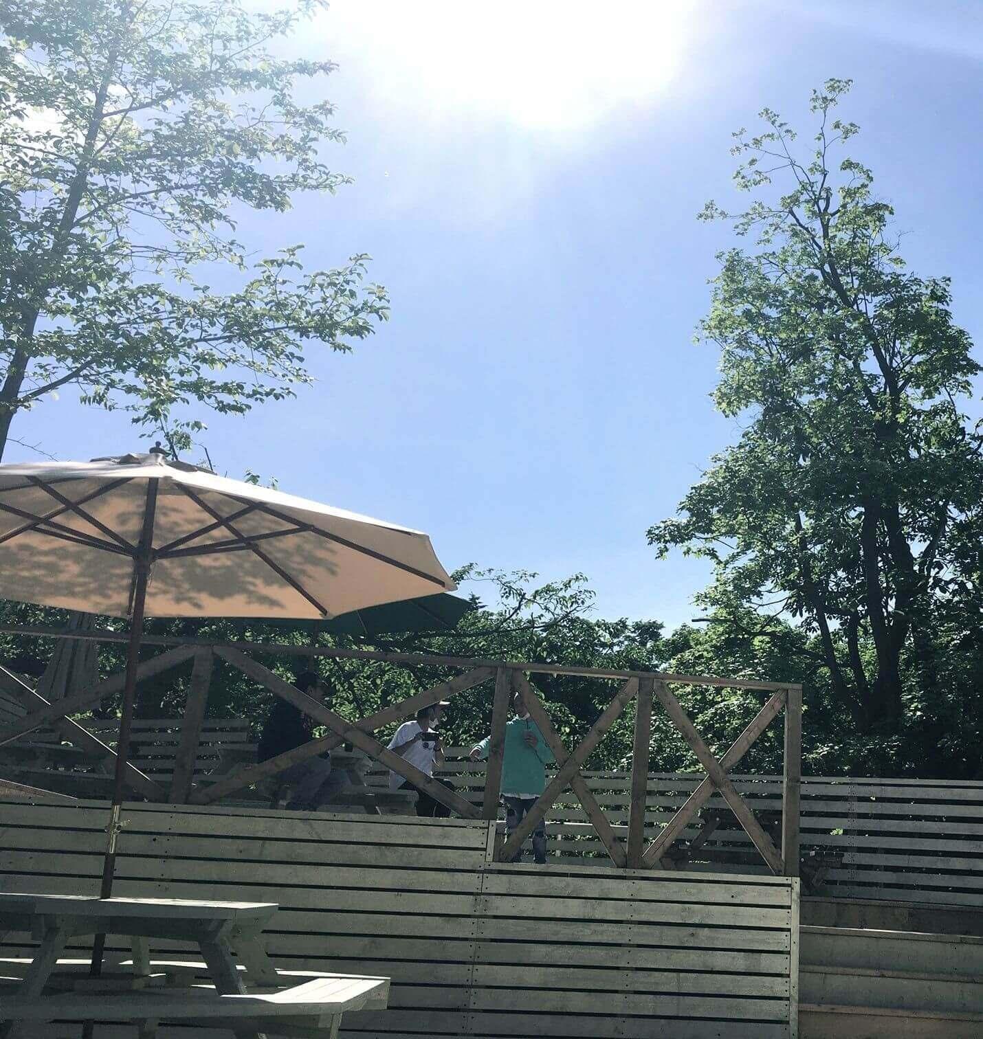 CAFE De CLAMP(カフェ ド クランプ)周りの自然
