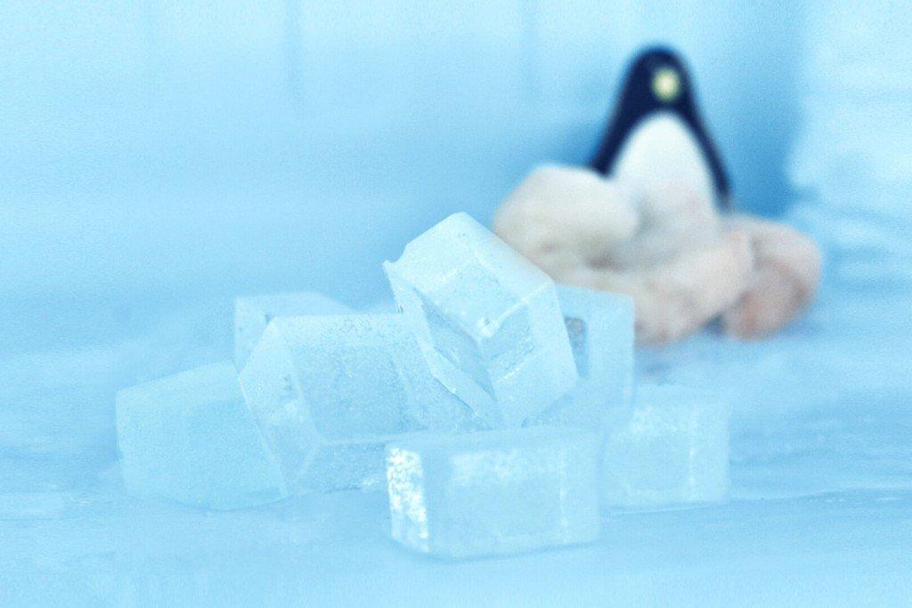 パパブブレ『氷キャンディ』