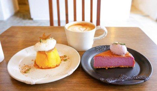 【allee cafe(アレイカフェ)】バスクチーズケーキやプリンも人気なany cafeの姉妹店がミニ大通にオープン!