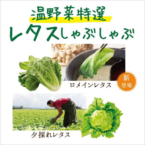 しゃぶしゃぶ温野菜の国産野菜食べ放題コース