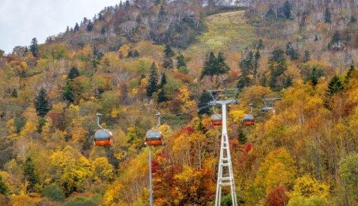 札幌国際スキー場にて紅葉とグルメが楽しめる『紅葉ゴンドラ&秋の味覚祭り』が開催!