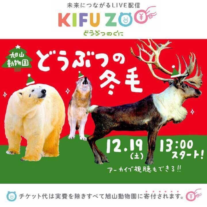 『KIFU ZOO』-冬を迎える動物たちの「毛」をテーマにした配信