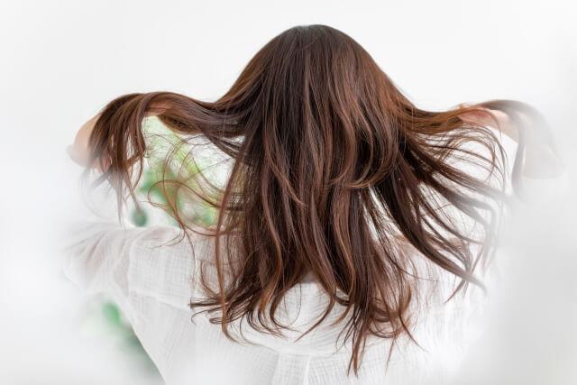 髪・美容室