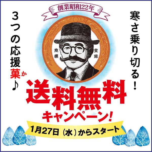 柳月のお菓子で北海道ざんまい!『濃厚クリーミー!寒さ乗り切る!3つの応援菓(か)♪』送料無料キャンペーン