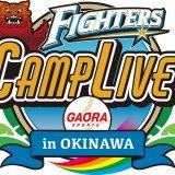 GAORA SPORTSにて沖縄・名護で行われる北海道日本ハムファイターズ春季キャンプの模様を連日生中継!