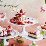 札幌ステラプレイスにあるJ.S. パンケーキカフェにて「あまおう」など旬の苺を使用した『ストロベリーフェア』が2月26日(金)より開催!