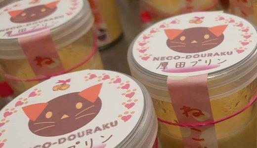 【魔法洋菓子店 ほしみ堂】手稲星置に「厚田プリン」に「にゃんこクッキー」も販売する洋菓子店がオープン!