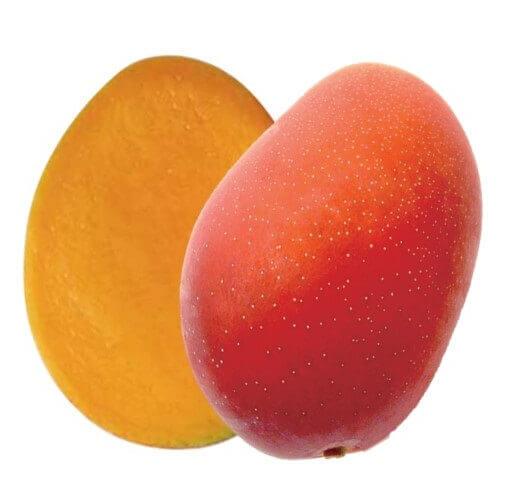 カフェコムサの『宮崎県産「完熟マンゴー」のケーキ』-完熟マンゴー
