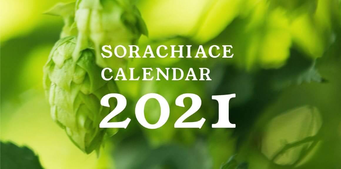 『サッポロ SORACHI1984』のブランドサイト-『ソラチエースホップ畑の様子』