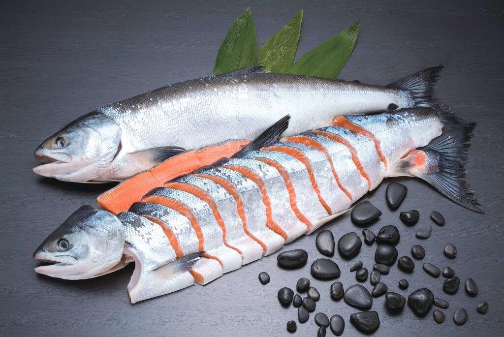 大丸札幌のライブショッピング『食で旅する北海道』-〈鮭乃丸亀〉船上活〆時不知鮭(さしみ鮭)
