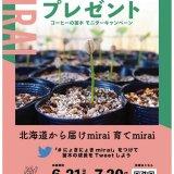 コーヒーチェーンを展開する可否茶館が創業50周年記念とし『コーヒーの苗木50th mirai モニター募集キャンペーン』を開始!